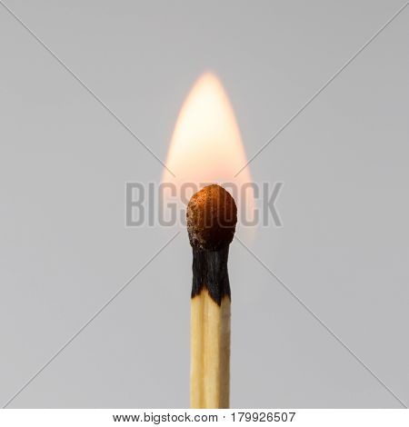 Match at the moment of ignition on a light gray background close-up