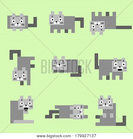 Flat corner grey cats on a green background. Vector illustration. Funny cartoon flat cool character.