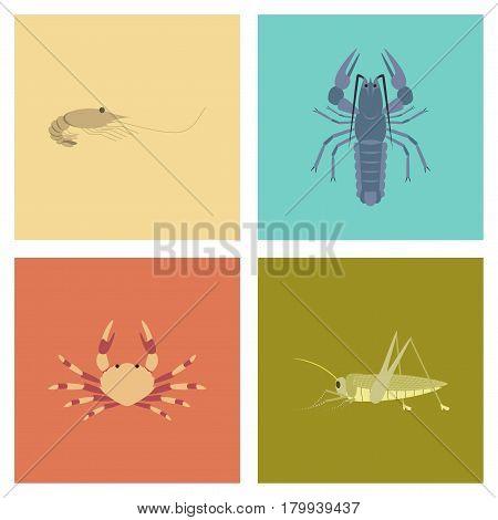assembly of flat Illustrations shrimp lobster crab grasshopper