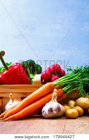 Vegetables. Potatoes, carrot and red pepper. Garlic, onion and brocoli. Lettuce salad and red radish. Wooden basket on blue background.