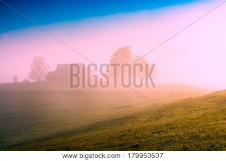 Village Shrouded In Bright Mist