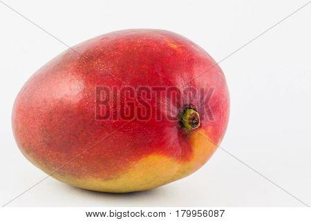 Mango ( Mangifera indica ) on white background