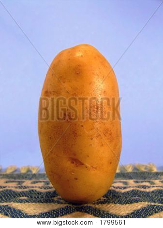 Standing Potato #2
