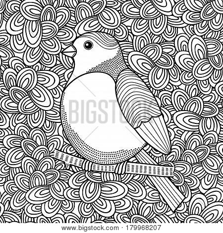 Black and white illustration of bird for coloring. Vector doodle background.