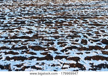 Thawed patches on the ground in early spring