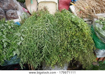 Medicative and fragrant herbs in the markets of Asia
