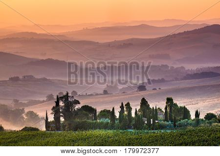 Tuscan Farmland During Sunrise, Italy