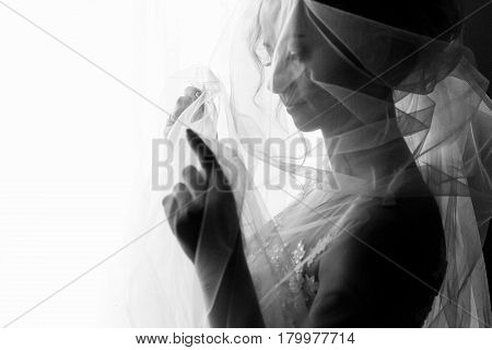 Beautiful Young Bride Holding Veil In White Wedding Dress, Portrait Of Brunette Bride Posing Near Wi