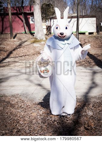 Vintage Easter Bunny holding a basket full of eggs in a wooded area.