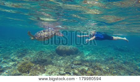 Snorkeling woman with sea turtle underwater photo. Green turtle with swimming woman in modern snorkeling equipment. Exotic sea animal. Tropical vacation sport activity. Sea tortoise in wild nature