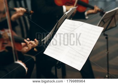 Elegant String Quartet Performing At Wedding Reception In Restaurant, Handsome Man In Suits Playing