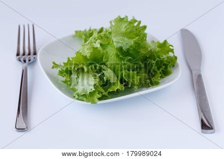 Fresh Salad In A Dish Over White Background. Diet Food And Healthy Lifestyle Concept.