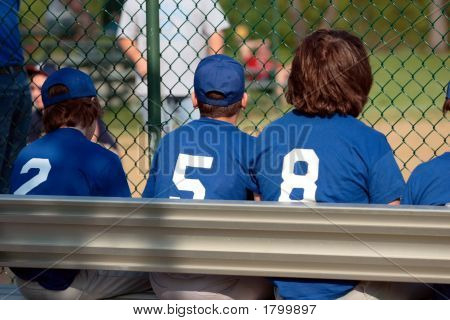 Baseball Team Sidelines On Bench