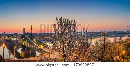 Budapest Hungary - Panoramic skyline view of Budapest at spring time shot from Gellert hill with cherry blossom tree and liberty bridge at sunrise