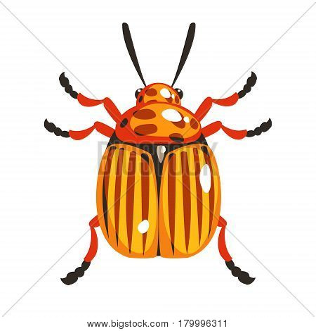 Colorado potato beetle colorful cartoon character isolated on a white background