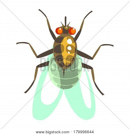 Fly insect colorful cartoon character isolated on a white background