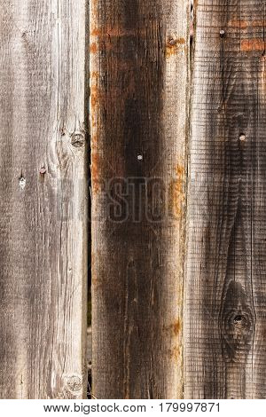 Weathered pine boards texture or background. Old wooden planks. Rusty iron nails.