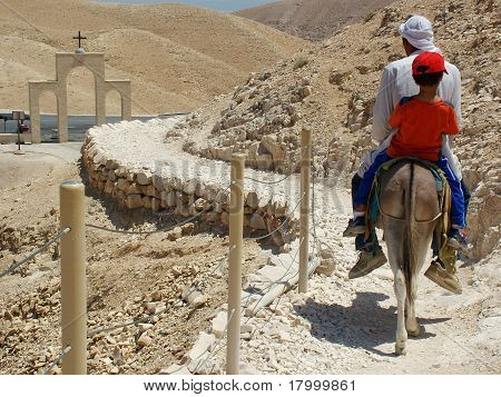 Pilgrim trek on a donkey in the Judea