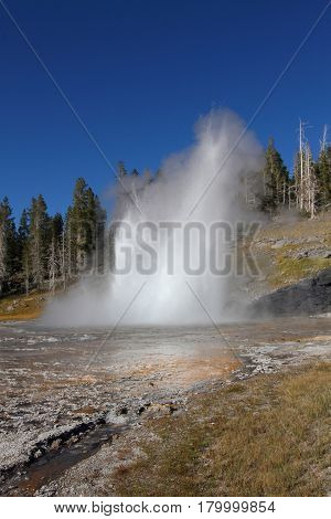 Grand Geyser in Yellowstone National Park in Wyoming