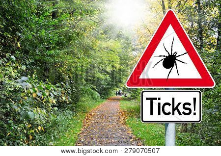 Raod sign in the forest with the german word for beware of ticks poster