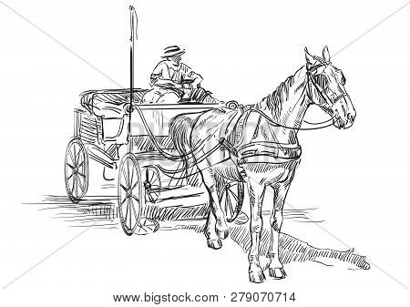Vector Hand Drawing Illustration Horse-drawn Carriage With Coachman. Monochrome Vector Hand Drawing