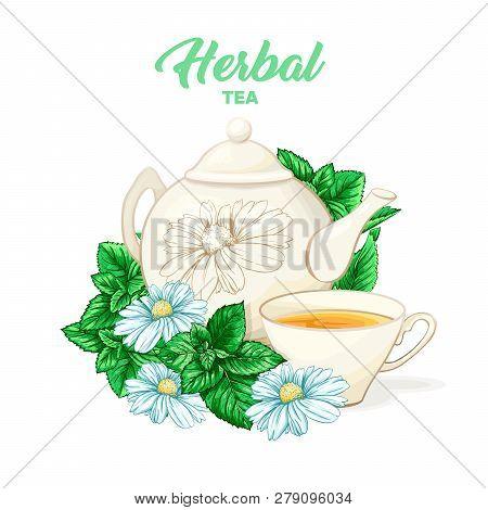 Herbal Tea Hand Drawn Color Illustration. Ceramic Teapot, Porcelain Cup, Camomile Flower, Mint, Teat