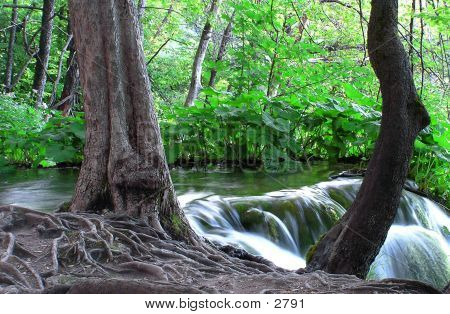 Beautiful Waterfall And Stream