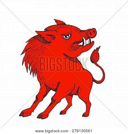 Doodle art illustration of a red razorback, wild pig boar or hog looking to side on isolated background done in bright red colorcaricature style. poster
