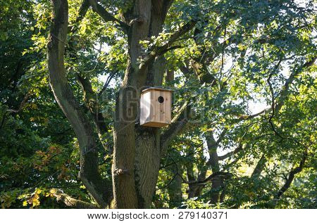 Ecological birdhouse. Beige wooden bird box with hole hanging from a tree ready to be done birds nest. Nature background.