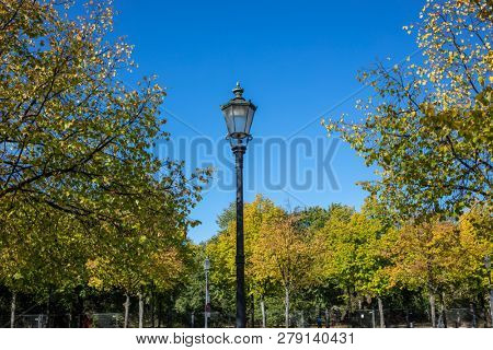 Vintage lantern on pole between green trees of park. Streetlamps, lush flora and people. Nature at autumn background.