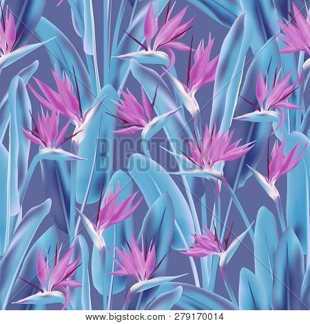 Bird Of Paradise Tropical Flower Vector Seamless Pattern. Jungle Exotic Tropical Plant Fabric Design