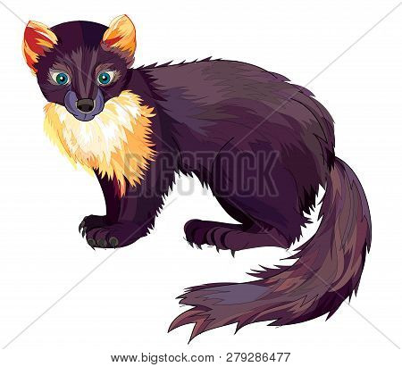 Fantasy Illustration Of Cute Marten On White Background. Hand-drawn Vector Image.