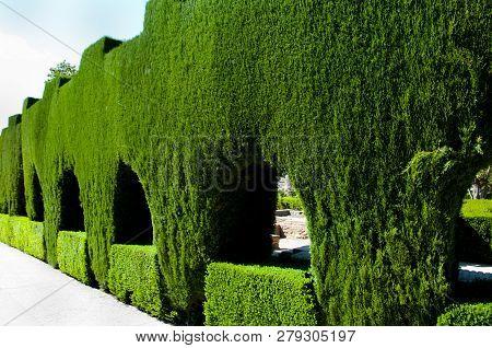 Public Garden Of Generalife - Granada - Spain