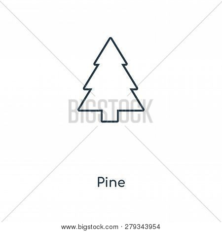 Pine Icon In Trendy Design Style. Pine Icon Isolated On White Background. Pine Vector Icon Simple An