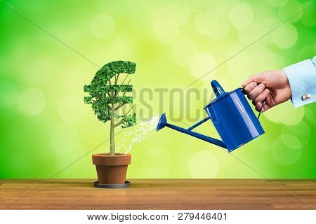 Euro Income Growth Concept. Income Growth Represented By Plant In Shape Of Euro Symbol Watered By Cf