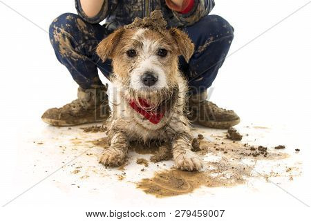 Funny Dirty Dog And Child. Jack Russell Dog And Boy Wearing Boots After Play In A Mud Puddle. Isolat