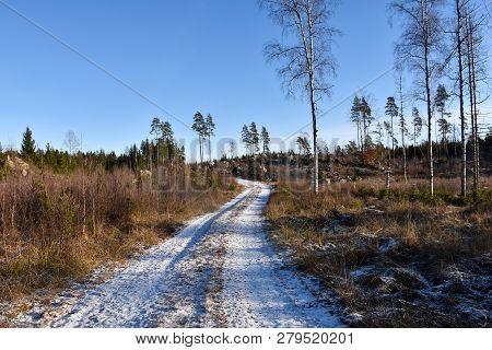 Snowy Gravel Road Through A Coniferous Woodland