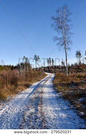 Beautiful Snowy Country Road Through The Woods At Winter Season