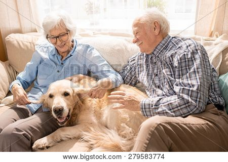 Portrait Of Happy Senior Couple With Dog Sitting On Couch Enjoying Family Weekend At Home In Retirem