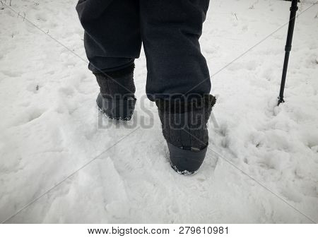 Human Feet Wearing Felt Boots In Rubbers Walking On Snow Covered Path