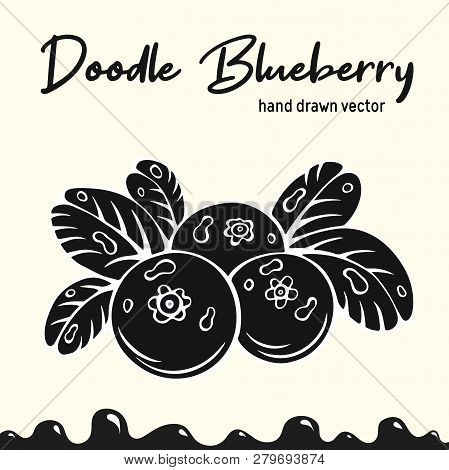 Blueberry Vector Illustration, Berries Images. Doodle Blueberry Silhouette Vector Illustration. Blue