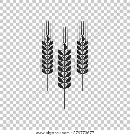 Cereals Icon Set With Rice, Wheat, Corn, Oats, Rye, Barley Sign Isolated On Transparent Background.