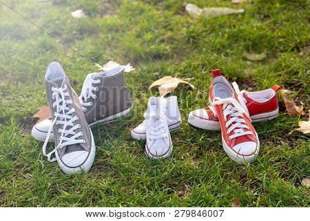 Autumn Image Of Family Shoes Sneakers Gumshoes On Grass In Sunset Light In Outdoors Family Lifestyle