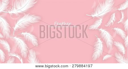 Feathers Background Vector Realistic. White Feathers On Pink Card Templates