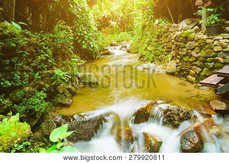 The Stream Flowing Downstream From The Upper Reaches Of The Forest Is A Watershed Of Abundance, The