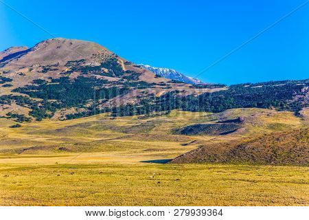 The yellow grass field surrounded by distant mountains. Argentine Patagonia. The concept of exotic and active tourism