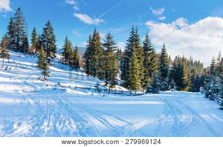 Winter Countryside With Spruce Forest. Snow Covered Road In Mountains. Beautiful Nature Scenery On A