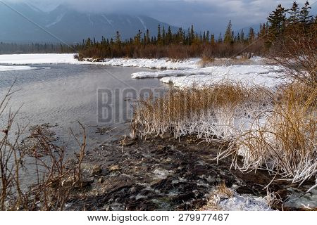 Frozen Winter Scene At Vermillion Lakes Parkway In Banff National Park, With Snow Covered Grasses, O