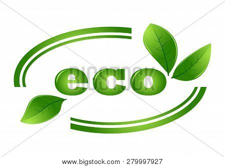 Organic Eco Vector Logo With Green Leaves. Organic Natural, Bio And Eco Green Label Illustration.eco