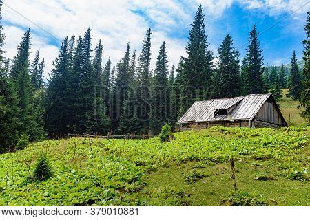 Old Rural Wooden Shepherd Hut In Carpathian Mountain